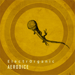 Cover_and_Posters_Aerodice-2
